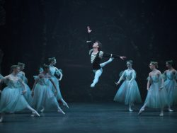 Dance Insights: Giselle