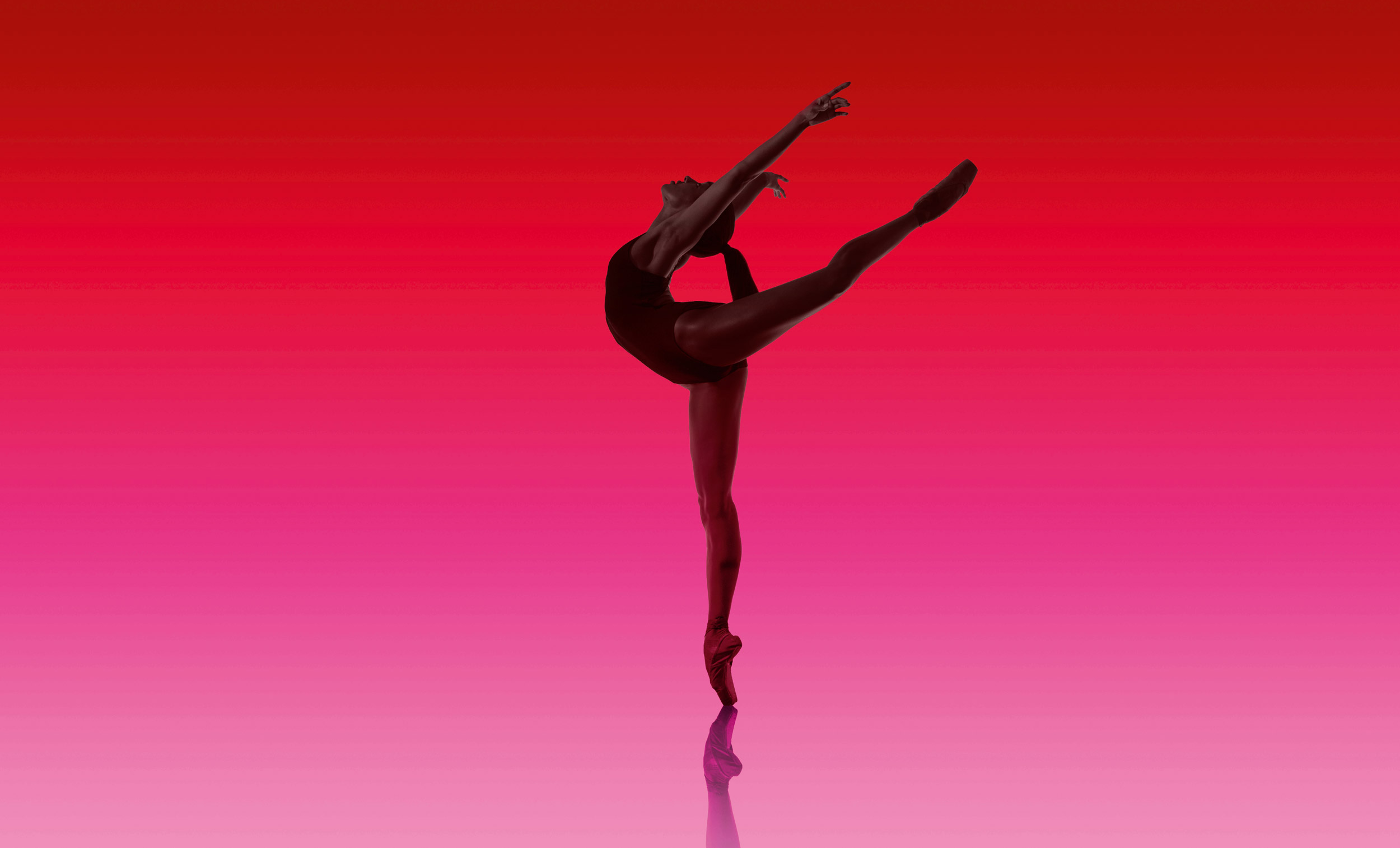Precious-Adams-1-photo-Perry-Curties-Art-Direction-and-Design-Charlotte-Wilkinson-Studio