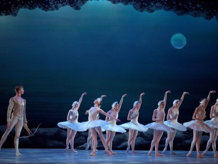 Great reviews for My First Ballet: Swan Lake
