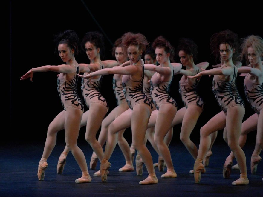English-National-Ballet-in-The-Cage-by-Jerome-Robbins-©-Laurent-Liotardo-(3)