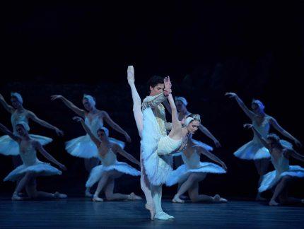 Swan Lake: Audience Reaction