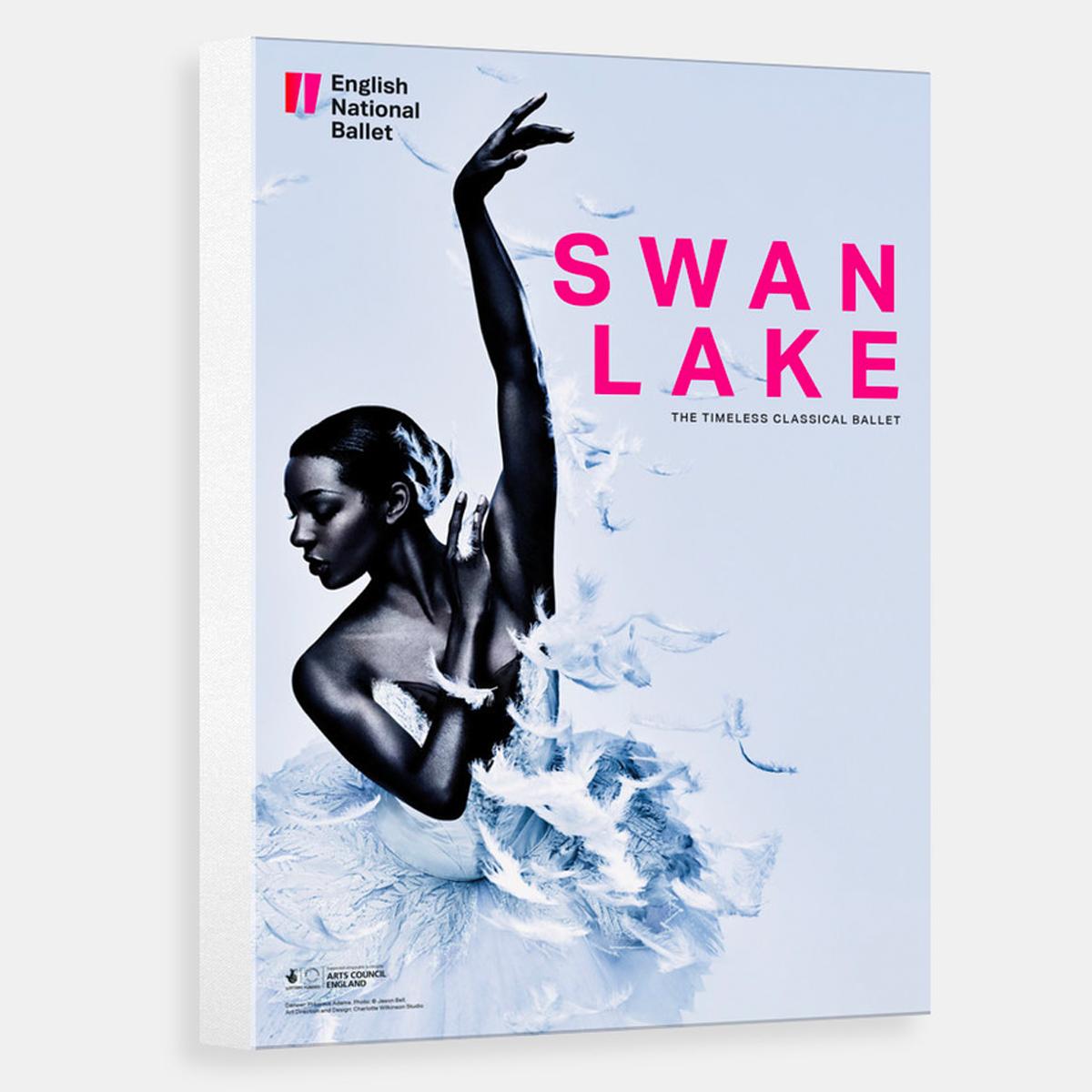 swan-lake-canvas