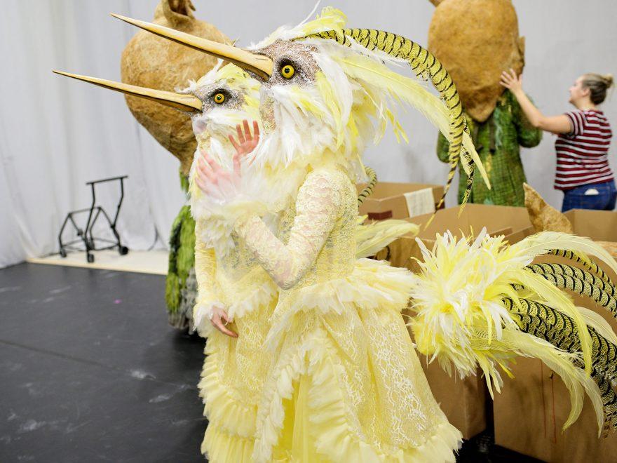 Costume parade: bird ladies of Cinderella