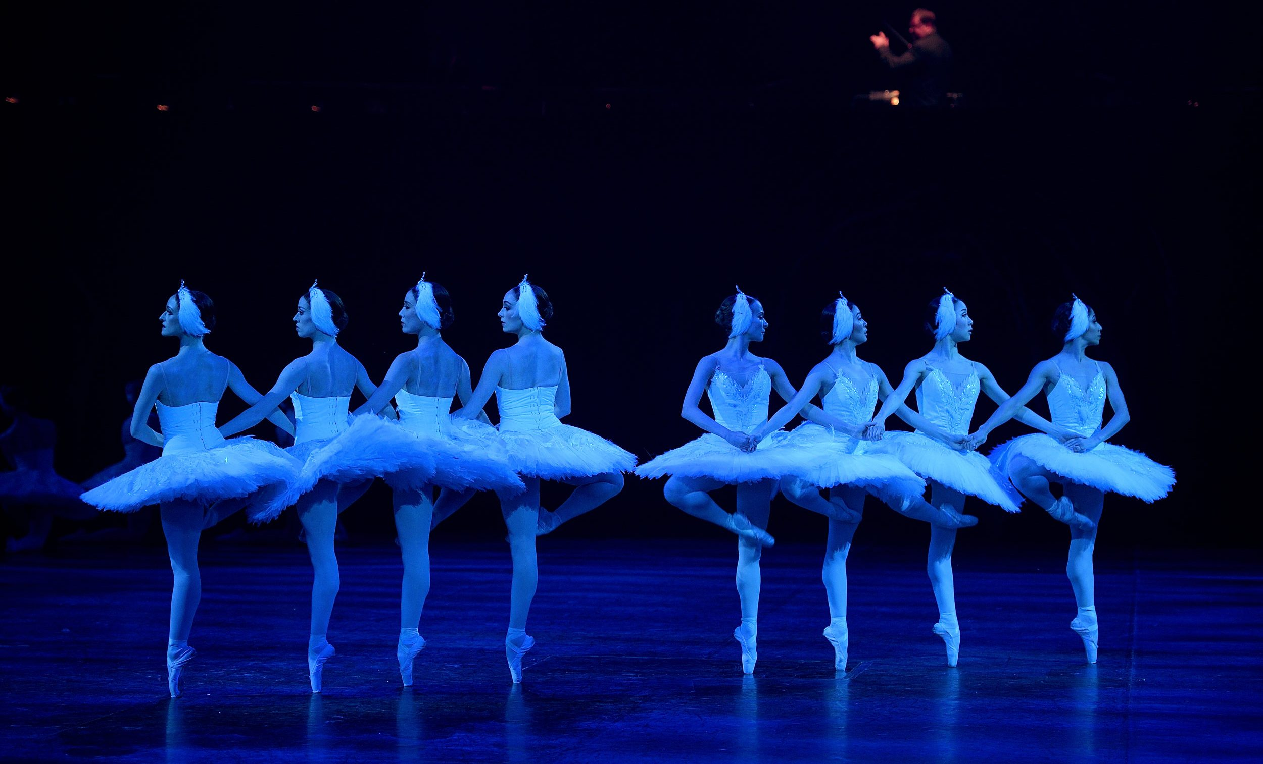 Swan Lake in-the-round © Laurent Liotardo
