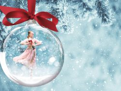 Nutcracker Christmas Gala