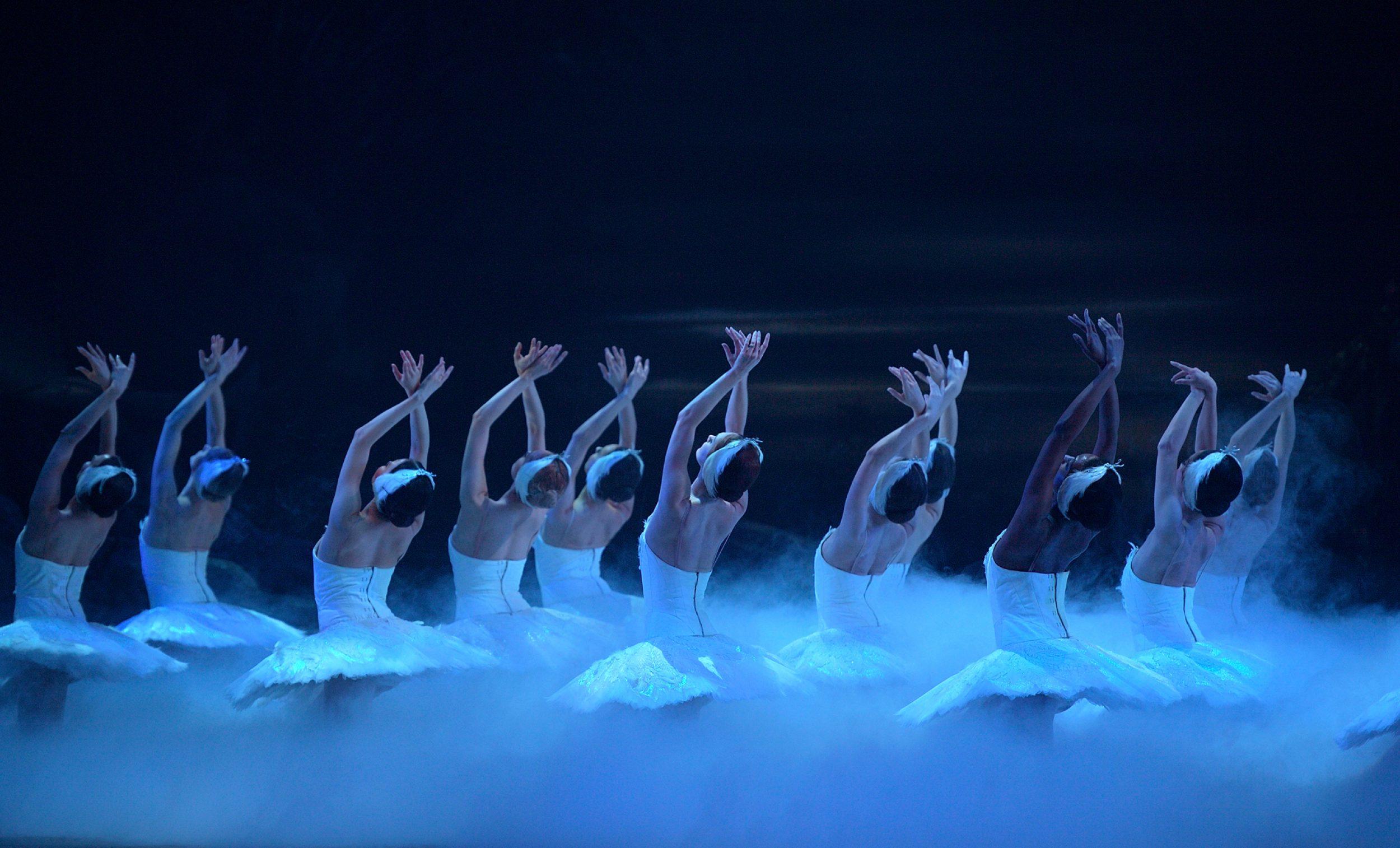 PRESS English National Ballet in Swan Lake © Laurent Liotardo (6)